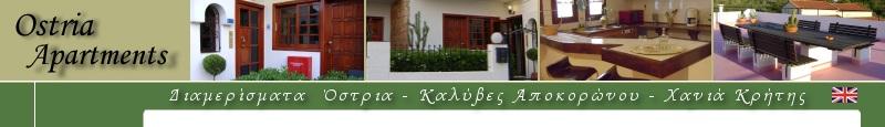 website top banner